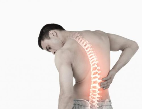 Is een pallet bed slecht voor je rug? – Lees onze tips!